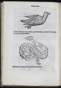 'Philosophia Naturalis, Compendium Clarissimi Philosophi Pauli Veneti' Paul of Venice Paris: J. Lambert, [ca. 1515?] M [Paulus] SR